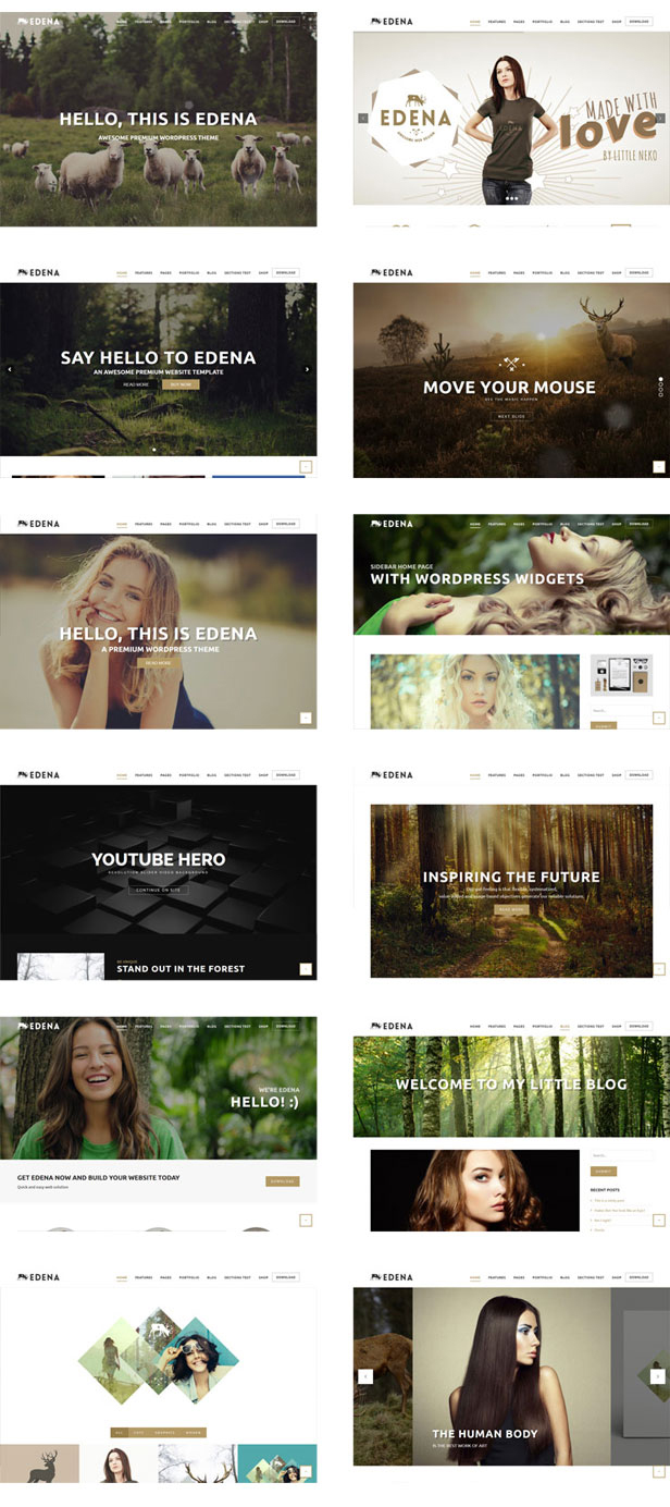 edena-wordpress-theme