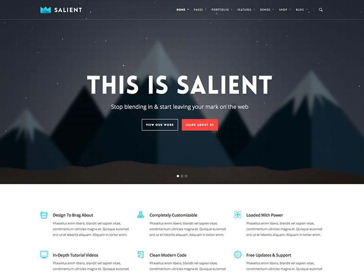 salient-wordpress-theme